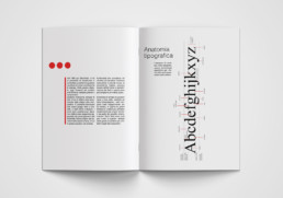 60th Anniversary Helvetica Typeface